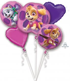 Bouquet Paw Patrol - Skye & Everest