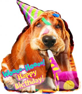 SuperShape Avanti Basset Hound Birthday